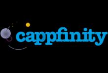 Consulting Partner Cappfinity